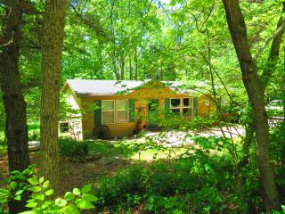 PINE RIDGE RETREAT-Southern Ohio/Pike State Forest, Bainbridge  Ross County
