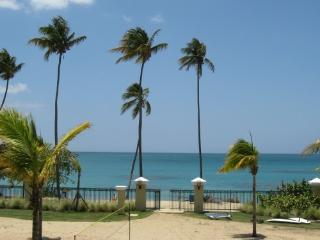 Beachfront, Rainforest,Luquillo just minutes away., Loiza