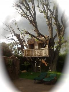 TREE HOUSE IN WINTER