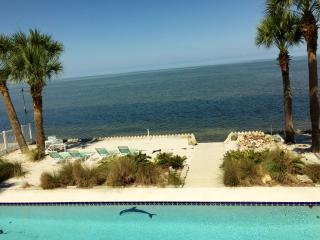 NEW!!Touchdown Beach House w/ Private Pool & Beach, Hernando Beach
