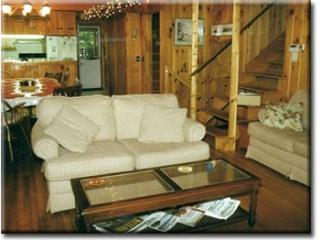 The great room, w/ table for 10, kitchen, gas firestove, and 2 sofas.