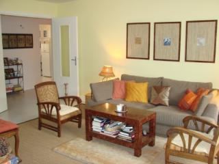 Spacious, comfortable 2 bedroom apartment, Paris