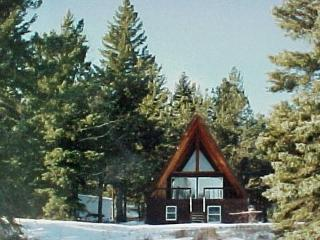 Black Hills Hideaway Cabin by Rochford, Lead