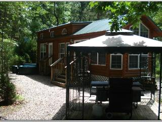 Cabin Front in Summer