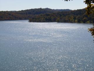 Dream Vacation Home on Table Rock Lake near Branson MO