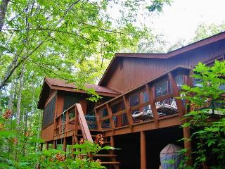 Relaxing 4BR Murphy Cabin in Bear Paw - Across from Lake Hiwassee w/Wifi & Lake Views from Front Deck - Close to Numerous Wonderful Local Attractions!