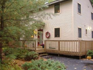 vacation home in woods w/ hot tub/Gaylord, MI