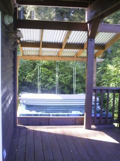 Hot Tub! seats 4-6