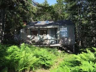 Waterfront cottage on quiet side of Mt. Desert Is., DownEast and Acadia Maine