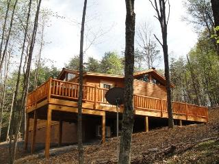 New modern Log Cabin. Private wooded surroundings.