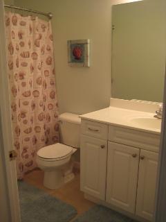 Full Main Bathroom