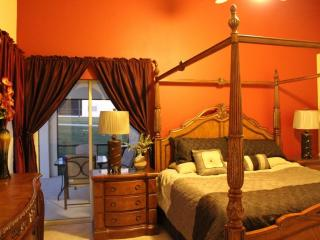 Charming luxury 2010 newly furnished house, Davenport