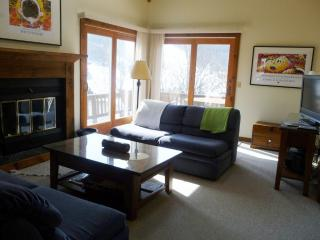 LOCATION! ON SLOPE, HOLIDAY VALLEY,Air Conditioned, Ellicottville
