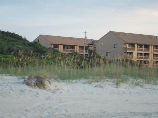 Pet-Friendly, Oceanview Condo with Internet and Pool, Near State Park, Myrtle Beach