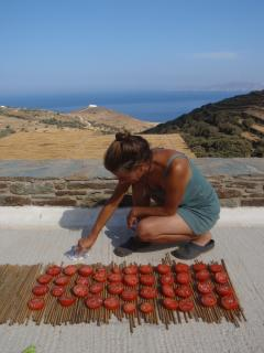 drying tomatoes in the sun