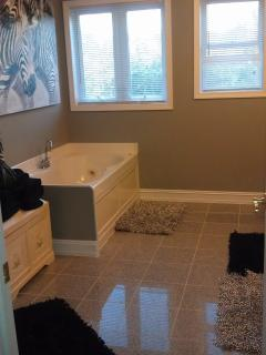 Master bath with double sink, Jacuzzi tub and a stand up shower