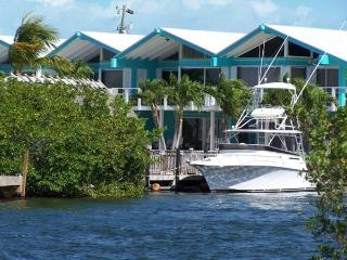 Get a bird's eye view of the Keys!, Key Largo