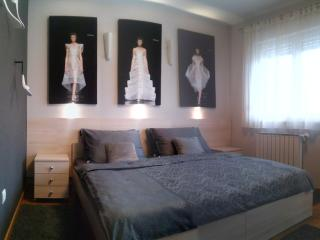 Luxury 2BD apartment, free parking, free wi-fi, Zagreb