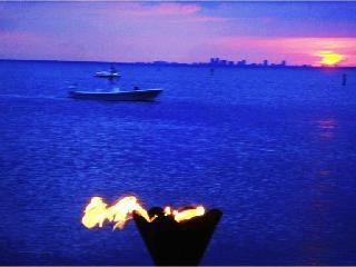 Private Beach-Gulf access  3.b.3b., Town House Suite U-3259, Tampa Bay