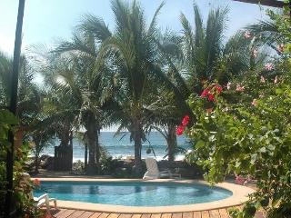 Secluded Oceanfront Tropical Inn, Ixtapa