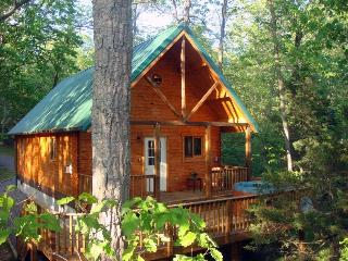 Cast-a-Way Cabin; A Perfect Place to Unwind!, Luray