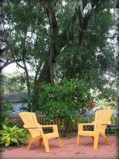 200+ year old live oak trees / mossy and orange/ palm trees in front patio area