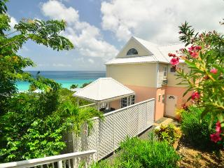 An Ocean View Villa / Suite 2 Minutes To Long Bay Beach, West End