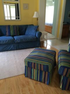 Living room with new Laminate Floors. Queen Size pull out couch