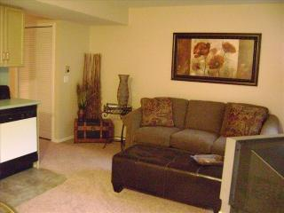 1 Bdrm, Condo, Walk in,miniature golf, Indoor Pool, Branson