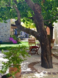 Enjoy our secluded garden with its cherry and apricot trees.
