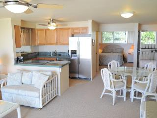 Large living room, kitchen, dining area, and view of the bedroom.