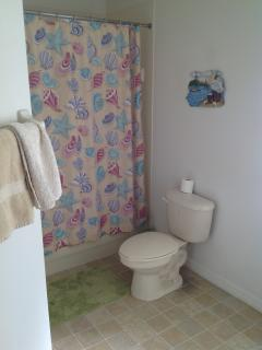 Master Bathroom showing WC & Shower Curtain to Bath