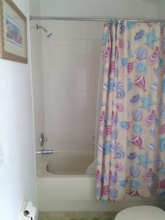 Master Bathroom Shower, Bath & Curtains