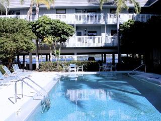 Anna Maria Island Beach Palms 5B