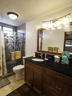 New Completely Remodeled Master Bathroom - May 2015