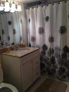 Guest bathroom between queen and twin bedrooms
