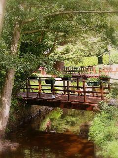 Bridge over small stream in grounds