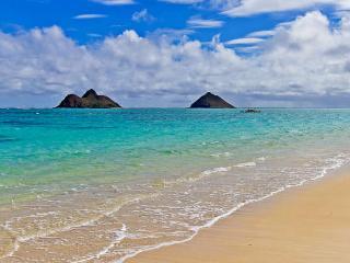 Kailua Surf Paradise Hale, pool