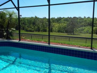 Villa Michele - Gorgeous Home near DisneyWorld, Four Corners