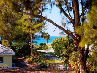 Beach House on Anna Maria Island-Rental Openings