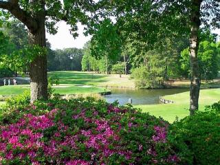 GREAT LOCATION-NEAR ALL ATTRACTIONS, Myrtle Beach