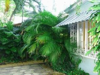 3 Min. Walk to Beach-Center San Juan-Quiet Villa, Miramar