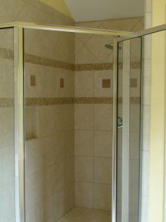 Master bedroom walk-in shower with rain shower head.