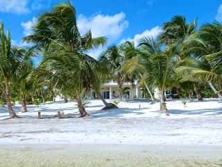 YUM BOTIC VILLA 3BR Your Own 213ft Caribbean Beach, Mahahual