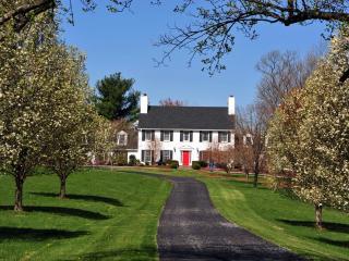 Spectacular Virginia estate in wine&horse country., Leesburg
