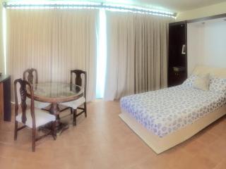 BEACHFRONT STUDIO NEXT TO CONDADO MARRIOTT HO, Miramar