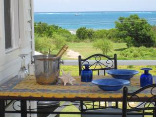 Seaview Apartment/Cottage   100yds to sandy beach!