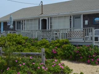 Cape Cod cottage just steps from private ocean beach!