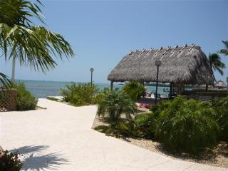 THE PALMS 417, Islamorada