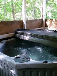 4 person Hot Tub..